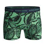 5-Pack Sammy Shorts BB Leafy, Lichen, L