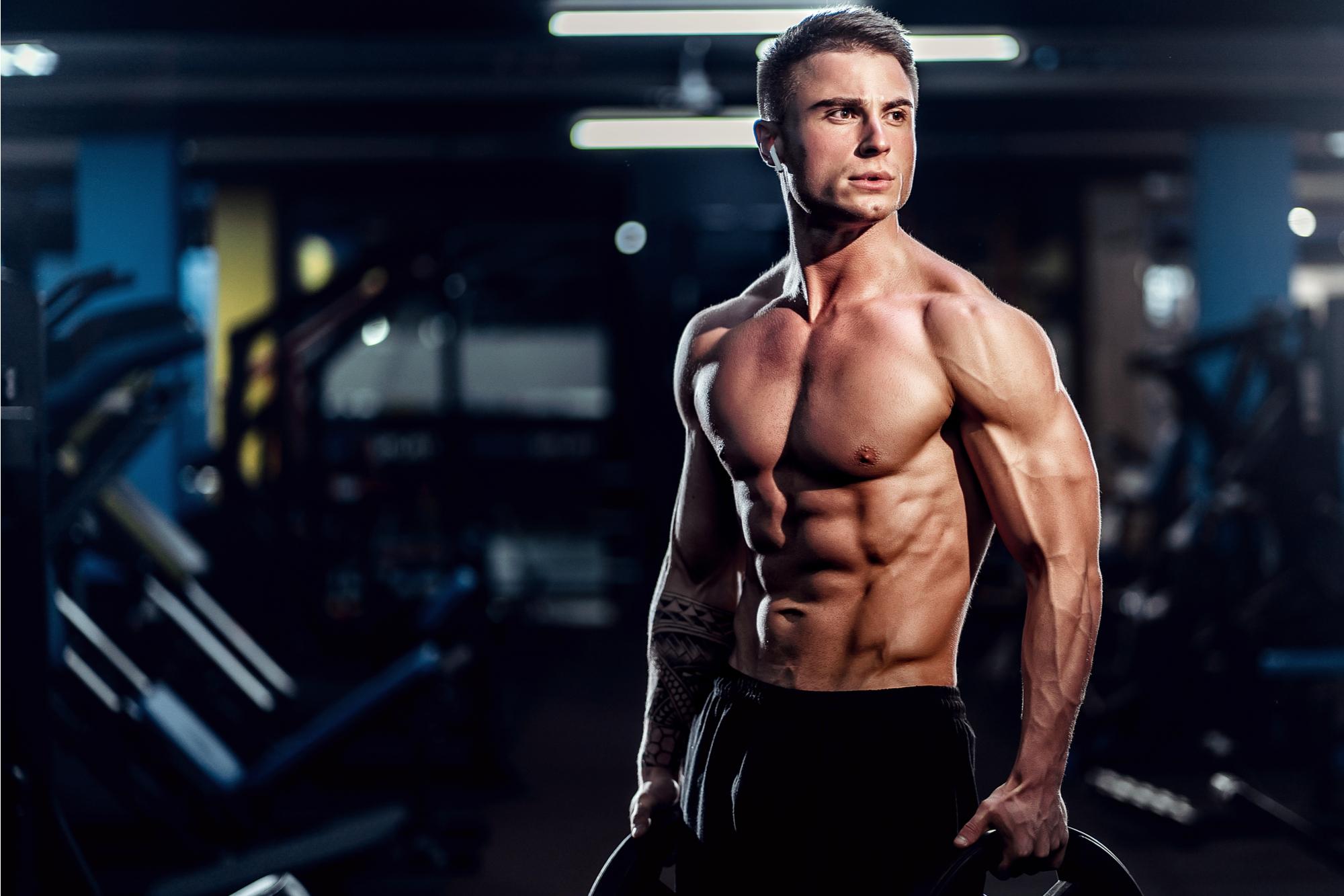 protein och fettförbränning